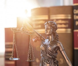 Lawyer In India